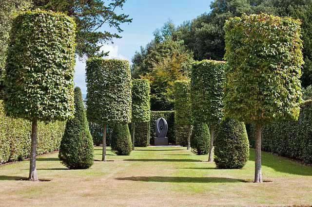 Formschnitt für Hecken und Bäume