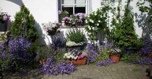 Garten, natürliche Gartenpflege