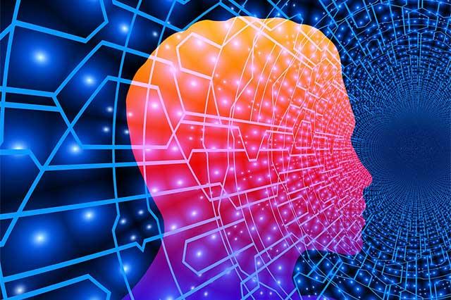 Wirkung der Düfte auf unser Gehirn