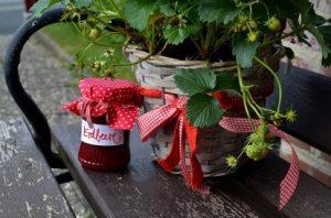 Erdbeerkonfitüre aus Erdbeeren selber machen