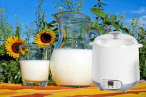 Joghurt selbermachen mit der Joghurtmaschine