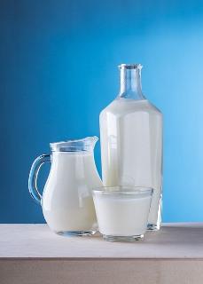 Milchsorten für die Joghurt Herstellung