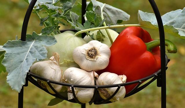 Gemüse, Vitalstoffe