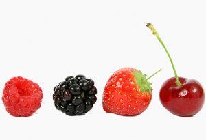 heimische Beerenfrüchte