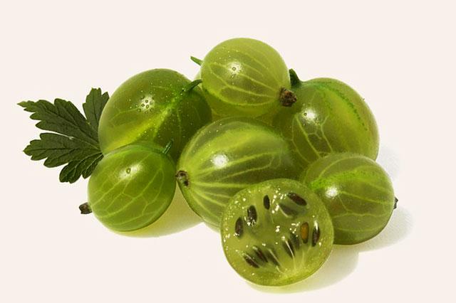 Stachelbeeren, unsere heimischen Beeren