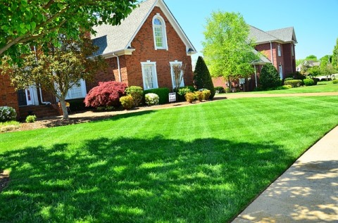 Rasenpflege richtig, natürliche Gartenpflege