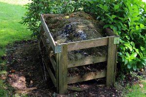 Kompost, organischer Dünger